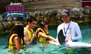 Nadar com golfinhos em Cozumel - Treinador de golfinhos