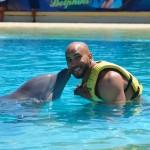 Interação com golfinhos em Dolphinaris