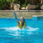 Nadar com os golfinhos, impulso do pé