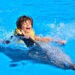 Nado e carona com golfinhos