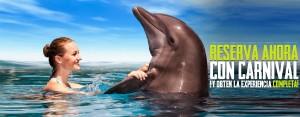 Cozumel Carnival Cruise line - Nado-con delfines.