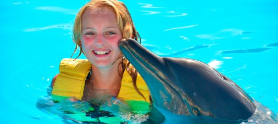 Swim with dolphins at Dolphinaris and have magic moments with dolphins.
