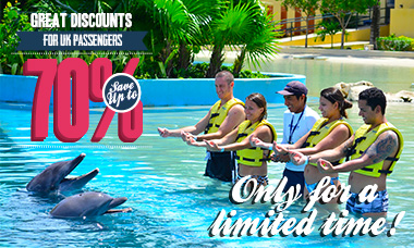 Swim with dolphins - UK deals - Trainer For a Day