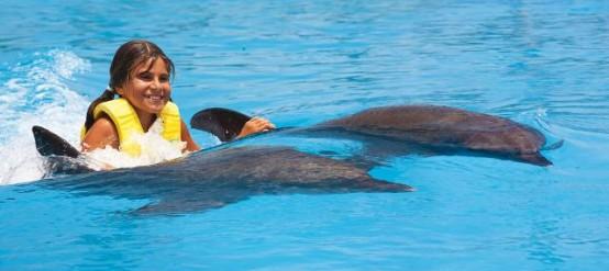 Delfines y un viaje con niños en la Riviera Maya.